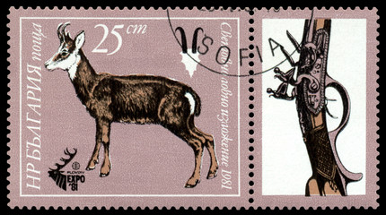 Stamp. Mountain goat.
