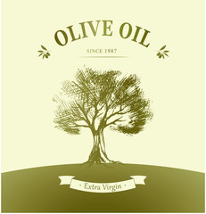 Olive tree. Vector oil . For labels, pack.