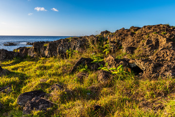 Beautiful landscape of the Easter Island