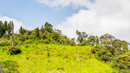 Beautiful nature of Ecuador