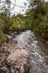 Nature of Papayacta, Ecuador