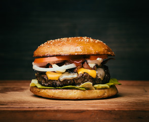 Fototapeta A tasty cheeseburger obraz