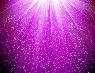 紫輝き150