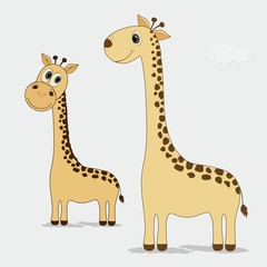 Two cute giraffes