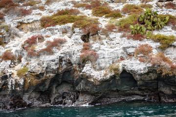 Rocks of the Bartolome Islands, Galapagos Islands, Ecuador