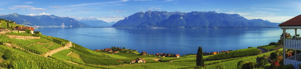 Panorama on Lavaux region, Vaud, Switzerland
