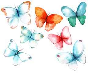 A collection of watercolour butterflies on white background
