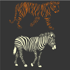 vector zebra and tiger