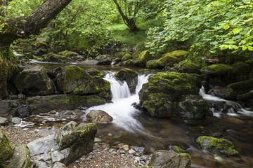 Aira Beck, river, near Ullswater in English Lake District.