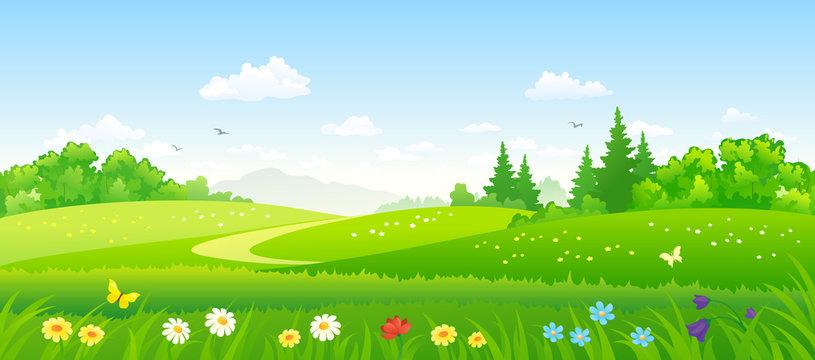 Forest fields