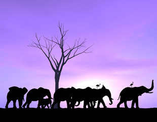 One Elephant Leads The Way as the others follow with a purple sunset or sunrise.
