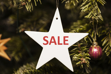 Sale auf Weihnachtsstern