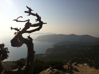 Mediterranean Landscape. Rhodes, Greece
