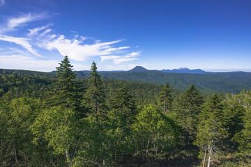 Fototapete - 津別峠展望台より原生林と阿寒の山々