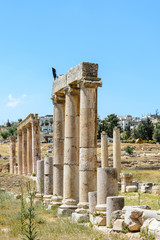 Roman columns of the ancient city of Gerasa, Jerash, Jordan