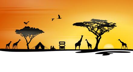 Skyline Afrika Safari und Zelten