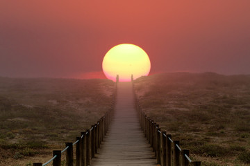 Path to the sun Wall mural