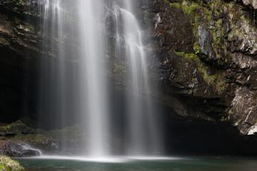 白い糸の滝