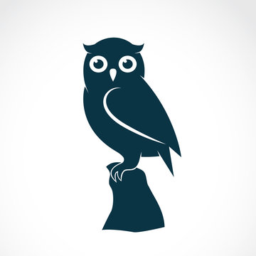 Vector of an owl on white background. Bird. Animals.
