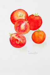 tomato' watercolor painted