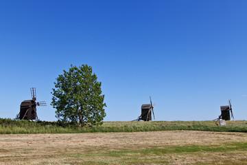 Bockwindmühlen mit Baum