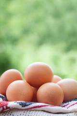 Free range chicken eggs