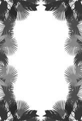 frame from black and grey palm tree leaves