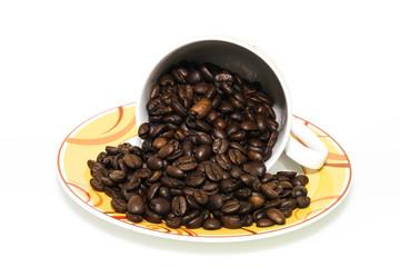 Kaffeegenießer