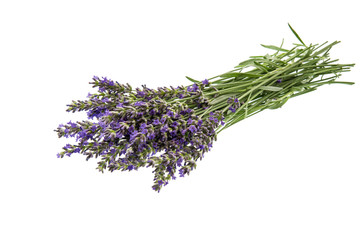 Bunch of lavender flowers over white background
