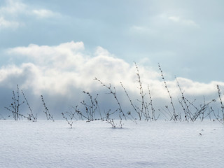 simple snowy landscape with clouds and branches