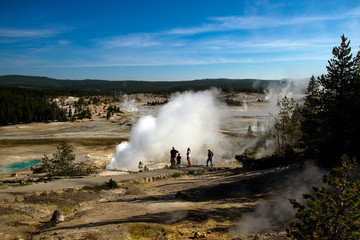 Active geysers in Norris Basin in Yellowstone National Park