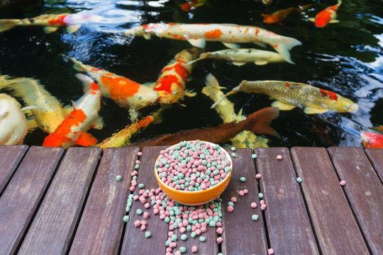 KOI Food and Koi Pond