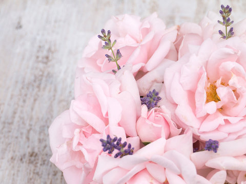 Pale pink roses and lavender bouquet on the white background