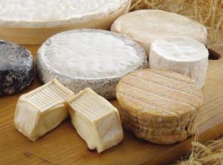 いろんなチーズ集合