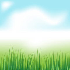 grass in sun light and defocused sky on background
