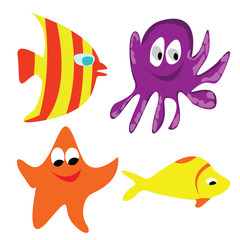 different kinds of fish that are in the water