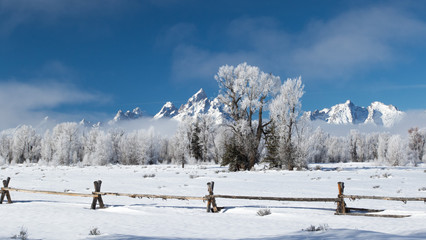 frosty ranch wooden fence jagged mountains in grand teton national park