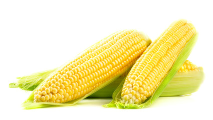 Fresh ripe corn