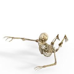 Crawling Skull.