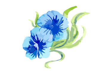 flower watercolor painting vector