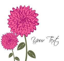 Decorative flower background greeting (dahlia)