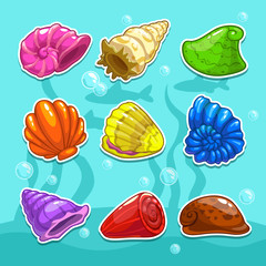 Set of cute cartoon colorful shells, vector illustration