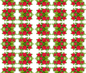 Zinnias flower seamless pattern isolated on white background