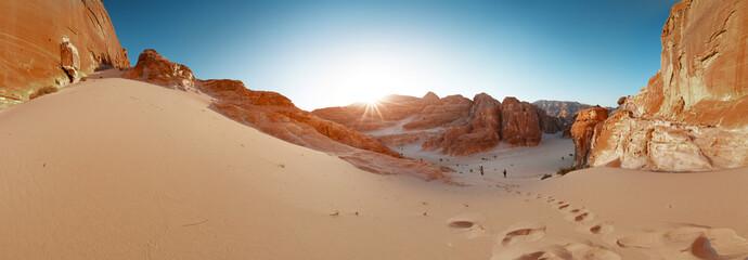 Desert Fotoväggar