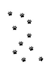 Animal leave a trail - Silhouette Vector