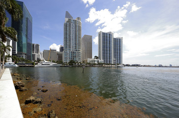Brickell Bay