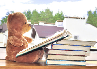A toy bear is reading a children's book and sits on the window.