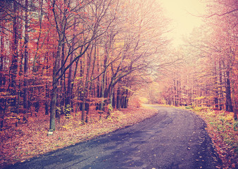 Vintage toned picture of a road in autumnal forest.
