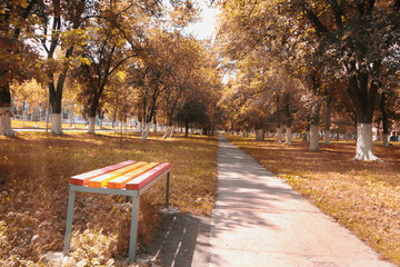landscape park in the city autumn