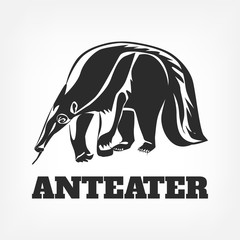 Anteater. Vector black illustration